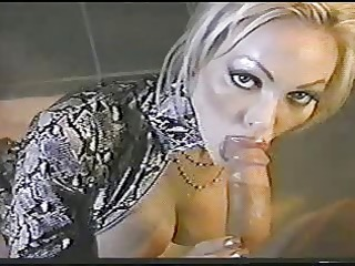 oral-sex dreams - houston